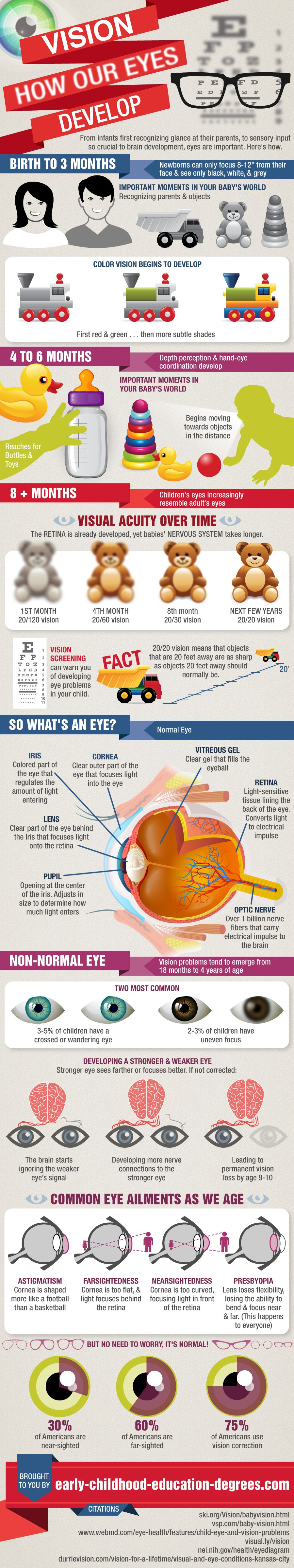 How-our-eyes-develop