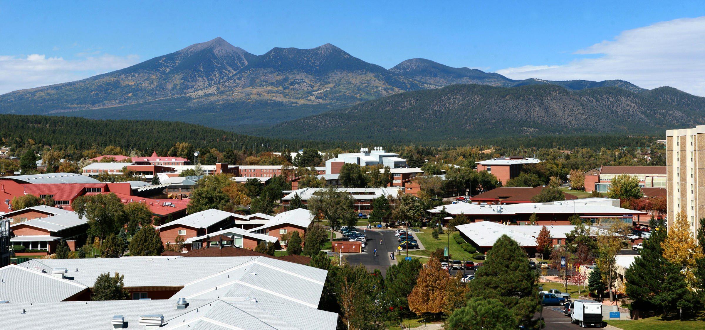 nsu campus
